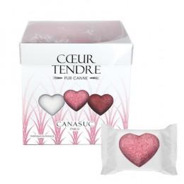 """Sucre Canasuc """"Cœur tendre"""" - 45 sucres"""