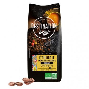 Café en Grains Bio Destination Grand Comptoir Moka Awasas Éthiopie - 1 kg